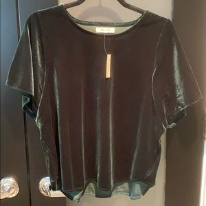 Madewell New with tags Velour top